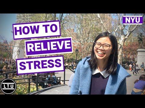 NYU Students' Stress Relief Secrets - New York University - Campus Interviews (2019) LTU
