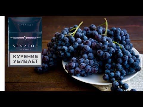 Самые Вкусный Сенатор с Виноградом II ОБЗОР ЦЭБАР 22.8 #33 II