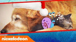 Праздничные песни Гэри | Nickelodeon Россия