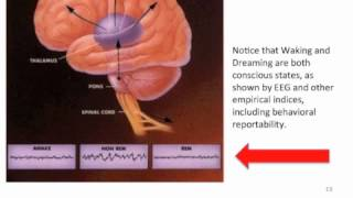 Bernard Baars -The Biological Basis of Conscious Experience: Global Workspace Dynamics in the Brain Thumbnail