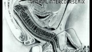 vaginal intercourse mix