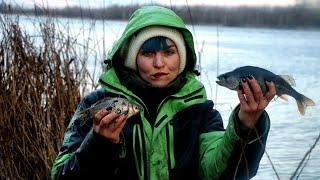 КАРАСЬ БЬЁТ в КОЛОКОЛЬЦА Зимой НА КОРМУШКИ Рыбалка в Беларуси 151