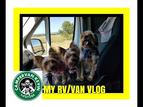 CVK Sings Without Clothes, Woof Pack Has Spa Day