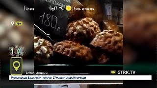 В уфимской кулинарии продают шарлотку с тараканами