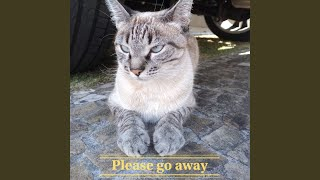 Please Go Away