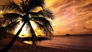 The Roc Project feat. Tina Arena - Never (Filterheadz Remix)