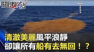 世界最致命海域!清澈美麗風平浪靜 卻讓所有船有去無回…!? 關鍵時刻 20180510-3 黃創夏