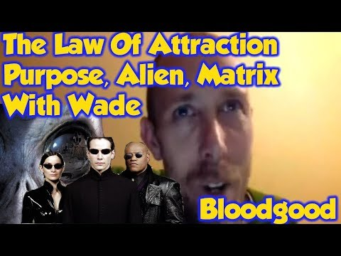 The Law Of Attraction: Purpose, Alien, Matrix With Wade Bloodgood