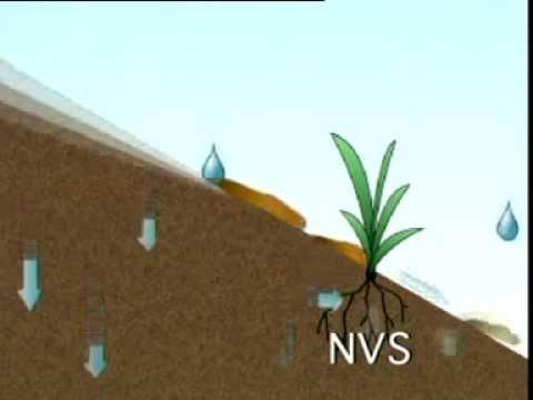 Permaculture - Terraces