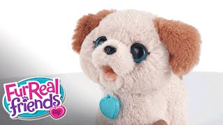 FurReal Friends - 'Pax, My Poopin' Pup' Demo - Hasbro