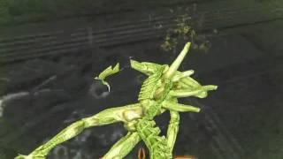 Aliens vs. Predator 2010 Demo  Pc Predator gameplay