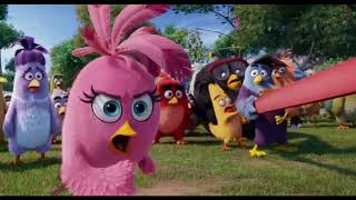 Fight Scenes The Angry Birds Movie