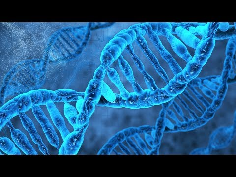 About the DNA to RNA to proteins dilemma