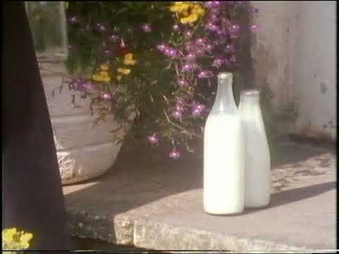 1980s Milkman | The Milkman | Milk Delivery | Seeing and Doing | 1981
