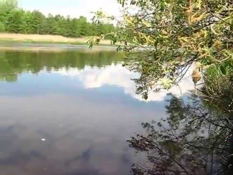 рыбалка в белорусском полесье