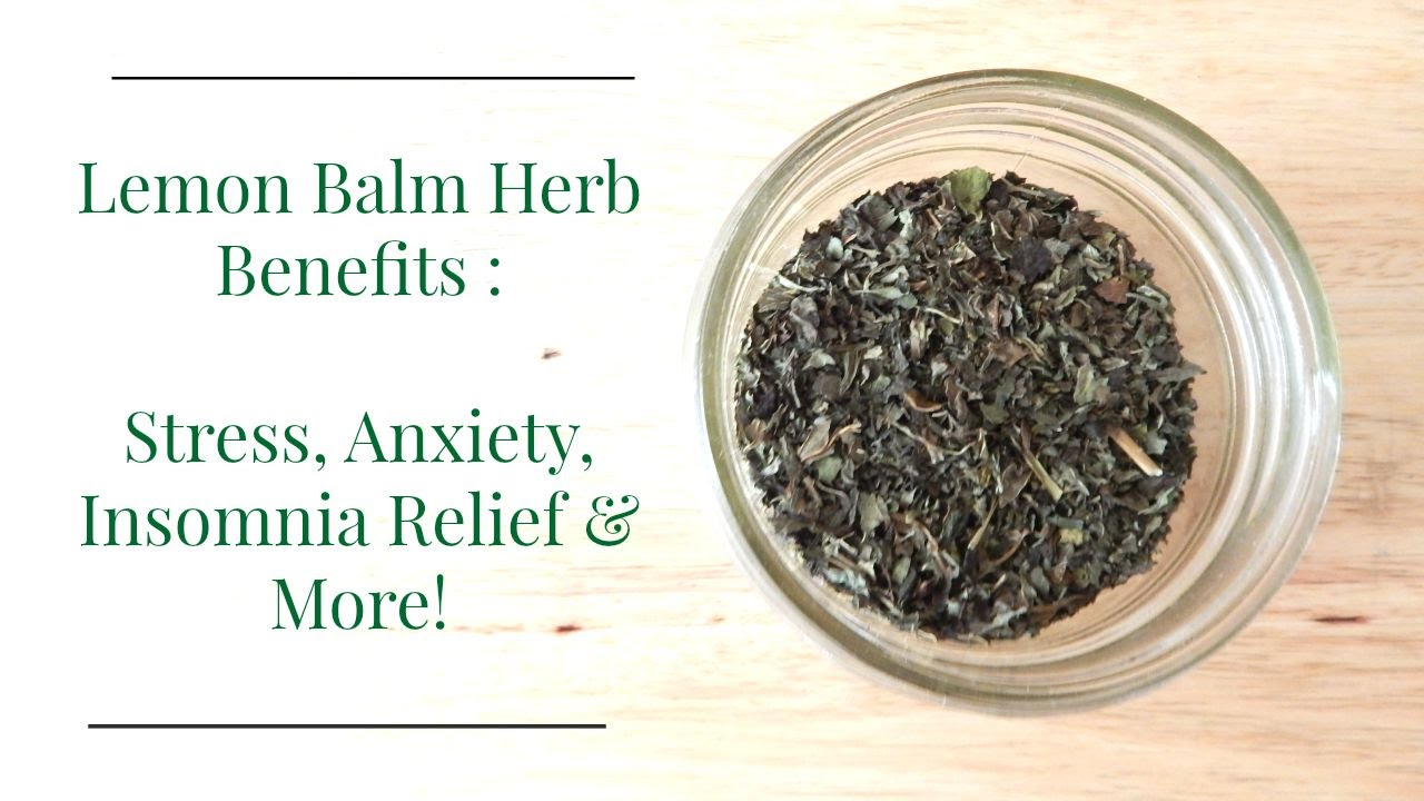 Lemon Balm Herb Benefits: Treat Stress, Anxiety, Insomnia & More ...