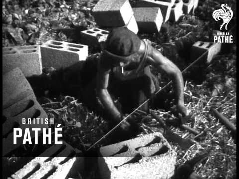 Building Israeli Settlement Aka Birth Of A Kibbutz (1948)