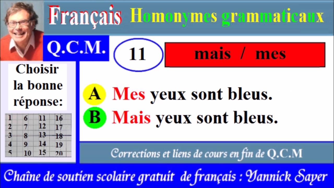 Exercices sur les homonymes grammaticaux français usuels CM1 CM2 - YouTube