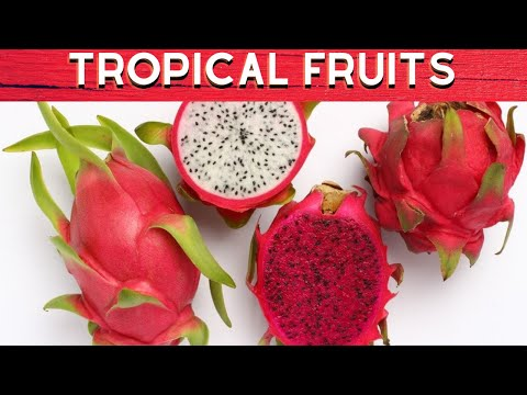 10 TROPICAL AND EXOTIC FRUITS OF THE PHILIPPINES - PhilippinesTravelSite