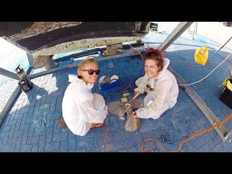 Haulout Makeover!- Sailing SV Delos Ep. 57