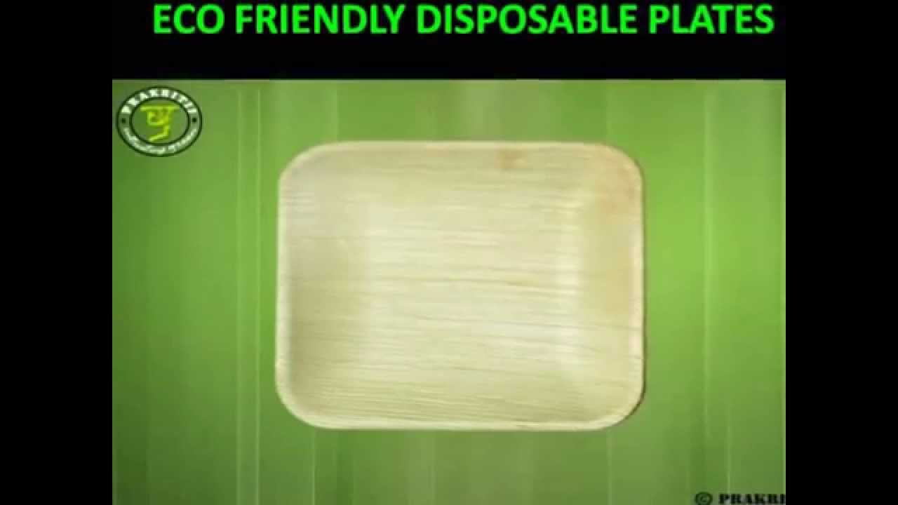 sc 1 st  YouTube : eco friendly disposable plates - pezcame.com