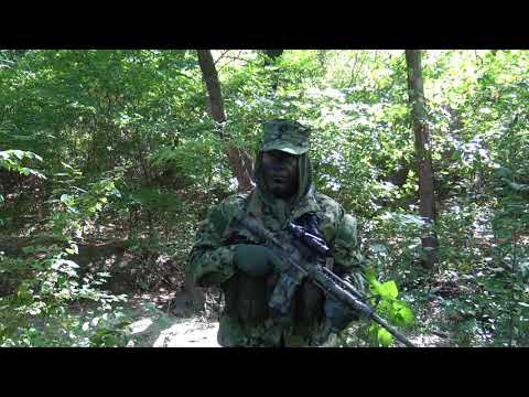 AOR II Camouflage Effectiveness