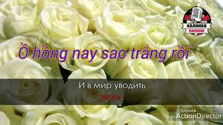 Hoa hồng trắng . Karaoke ( nhạc Nga lời Việt )