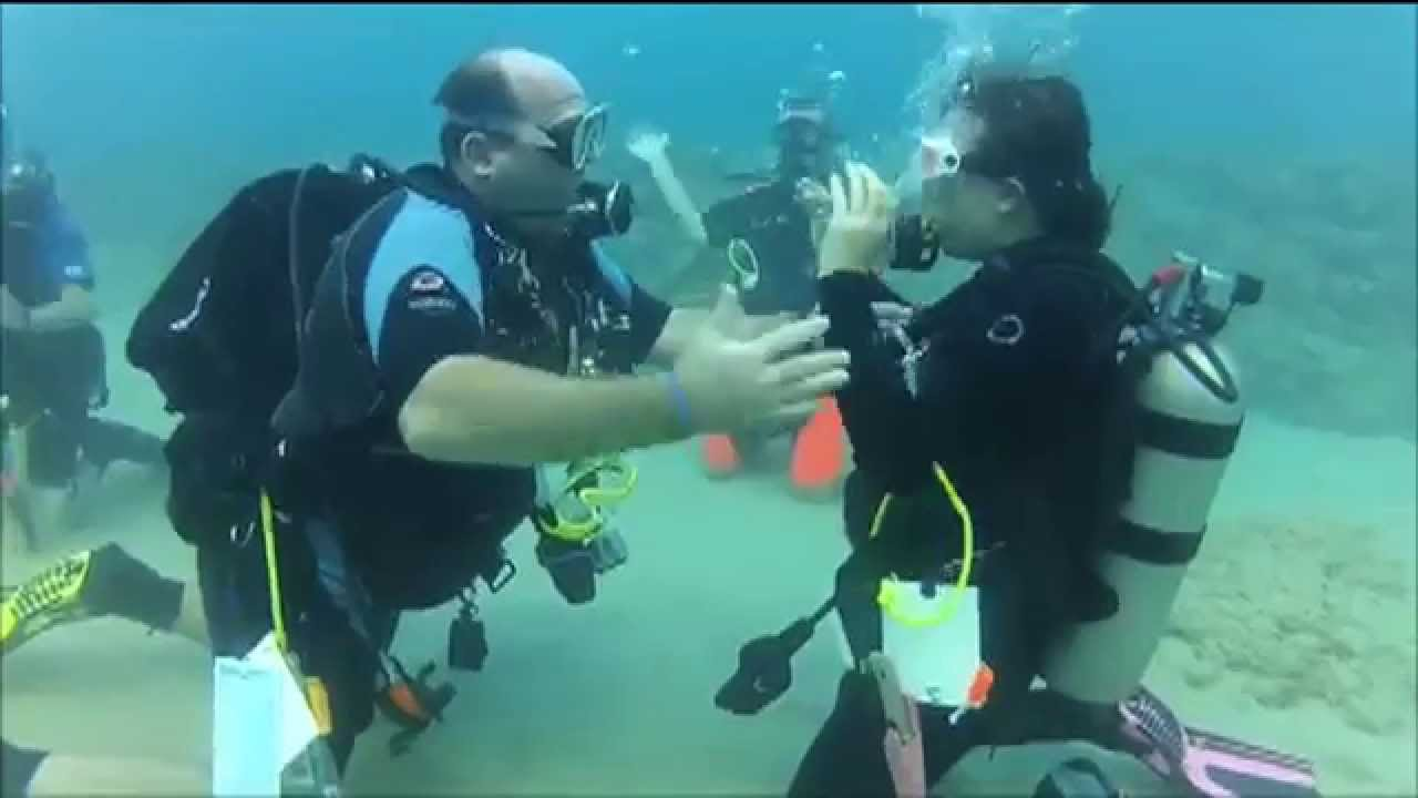 Diving In How To Get Scuba Diving Certified Youtube