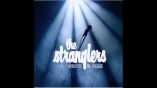 The song European Female by The Stranglers, from the album Accousti...