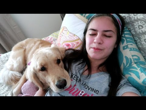 🐾 Service Dog Saves Me From a Fainting Spell 😵 (8/22/17)