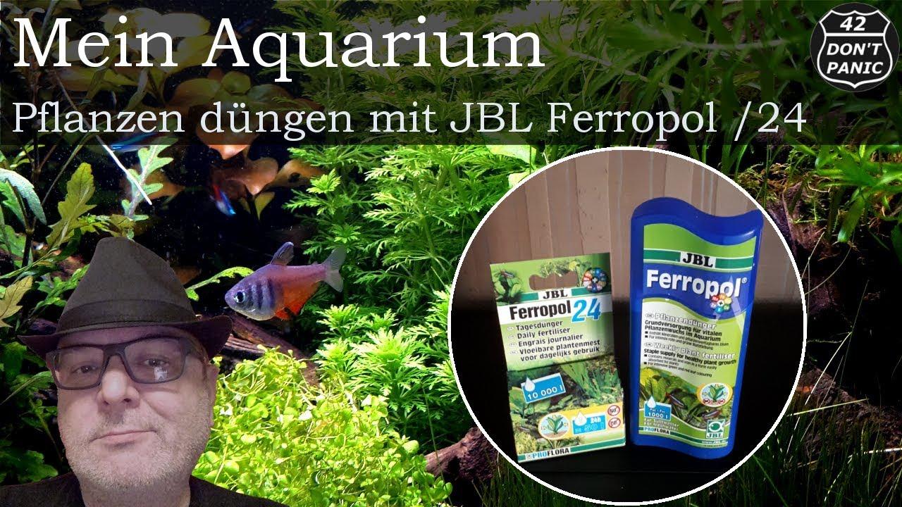 pflanzen d ngen mit jbl 2von5 mein aquarium 62 youtube. Black Bedroom Furniture Sets. Home Design Ideas