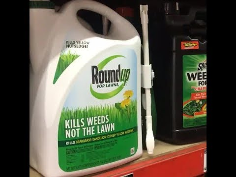 Ban on weedkiller glyphosate won't save anyone from cancer