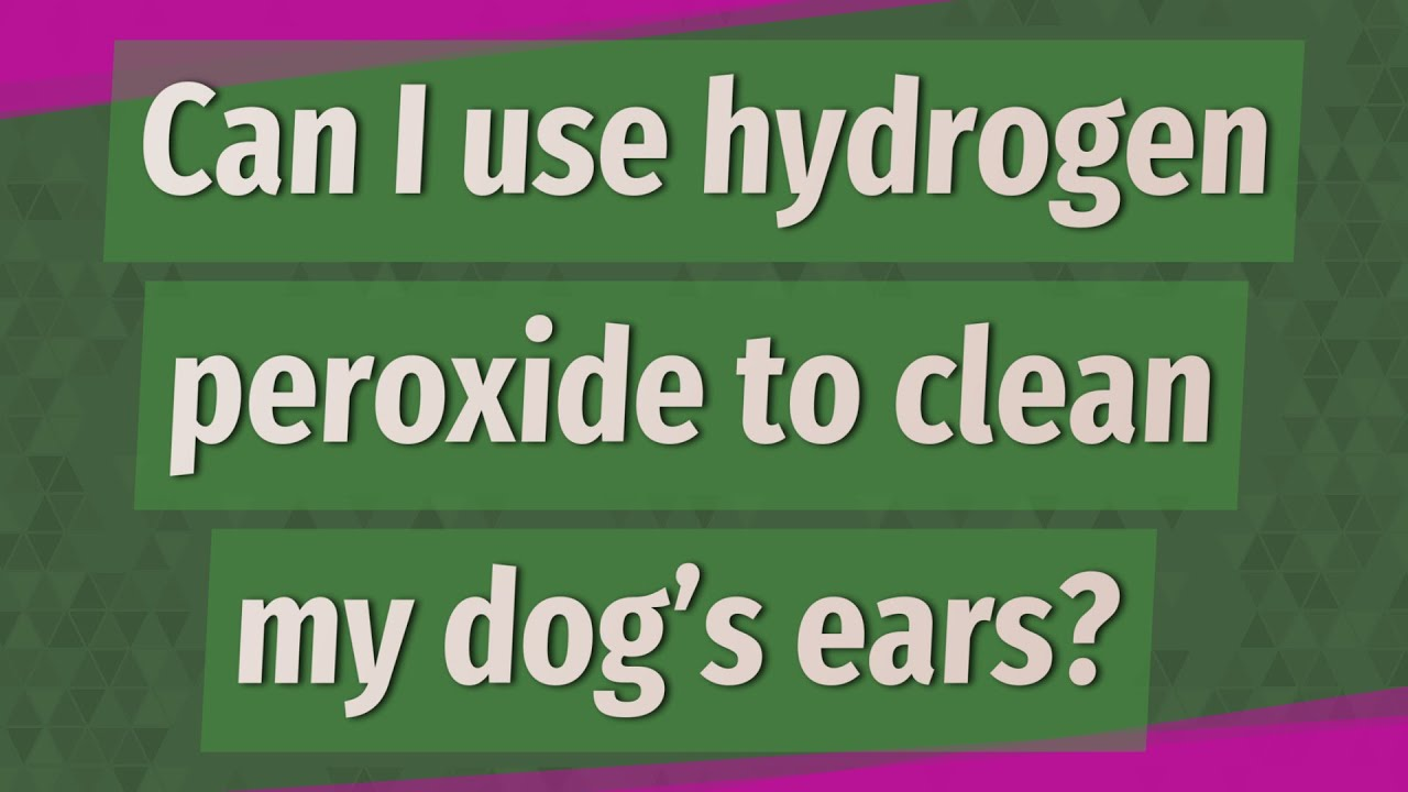 Can I Use Hydrogen Peroxide To Clean My Dog S Ears Deeper Meaning