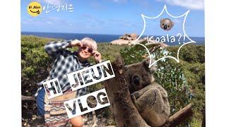 안녕지은 | 호주 | 호주여행 | 애들레이드여행 | 캥…