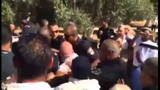 Temple Mount Police Attacked by Muslim Mob