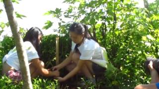 MISS CLAVERIA 2011 TREE PLANTING ACTIVITY HIGHLIGHTS