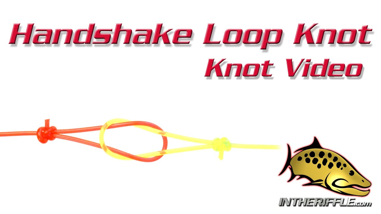 Leader to fly line handshake loop knot directions fly for Fishing line leader