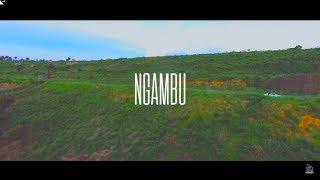 Robinio Mundibu - Ngambu (Official Video)