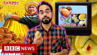 Why is North Korean potato propaganda back? - BBC News