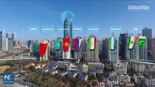 China expects Qingdao summit to be