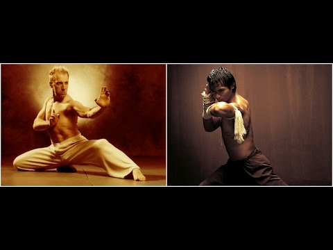 Cyril Raffaelli VS Tony Jaa