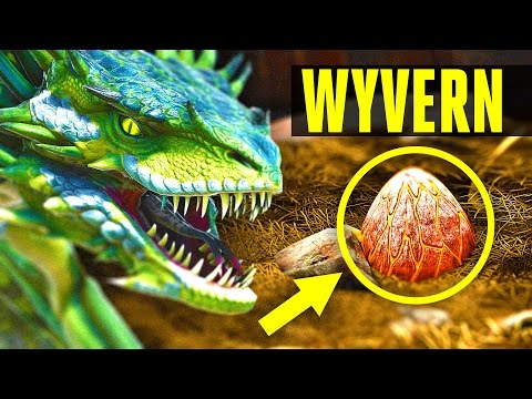 Wyvern - How to tame/Where to find eggs - EVERYTHING YOU NEED TO KNOW! (ARK: Scorched Earth)