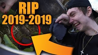 RIP VÅR LILLA PEEP [2019-2019] 😢
