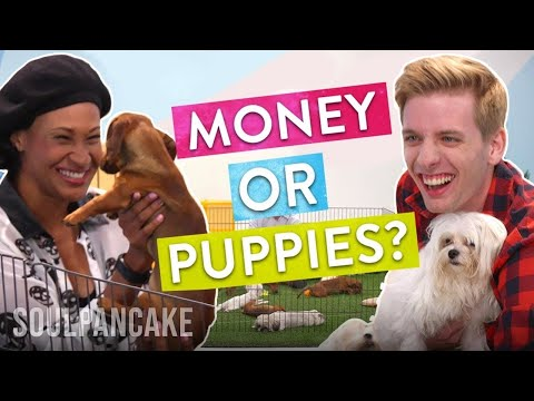 People Choose Between Money or Puppies! | The Science of Generosity