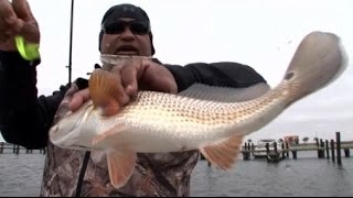 Winter Time Northshore Louisiana Red Fish