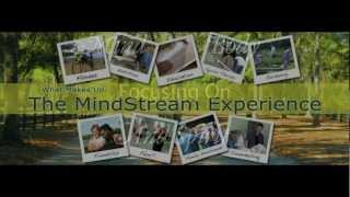 Welcome to MindStream Academy