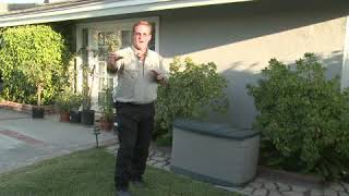 How to Keep Cąts Away From a Yard