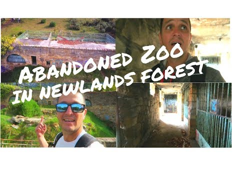 Abandoned Zoo In Cape Town VLOG 075