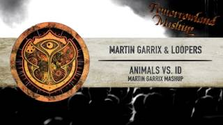 Martin Garrix & Loopers - Animals vs. ID // TML Mashup