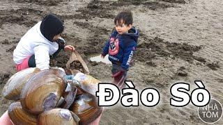 Cuộc sống Mỹ: Ra biển đào sò - Clamming in Oregon
